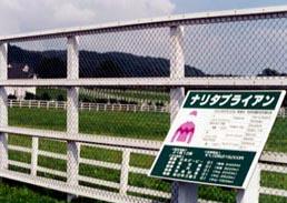 1999年_CBスタッド_ナリタブライアン没後の放牧地