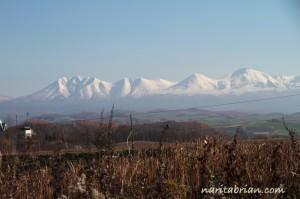 121111_美瑛青い池へ向かう途中の山々
