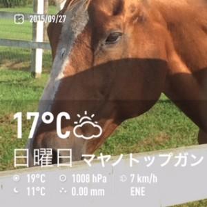 2015/09/27/新冠優駿記念館マヤノトップガン