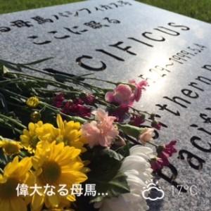 2015/09/27/新冠パシフィカス墓碑